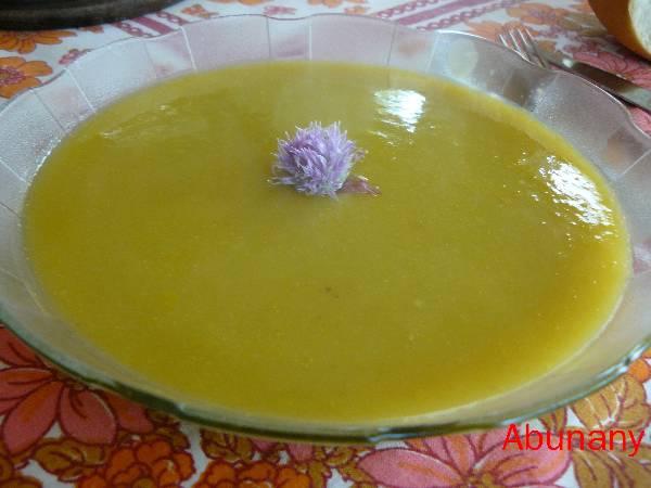 Sopa crema de calabaza y puerro